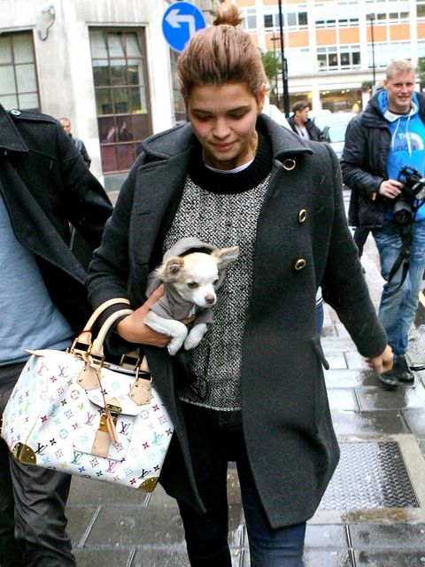 <p>Pixie Geldof and her dog in London.</p>