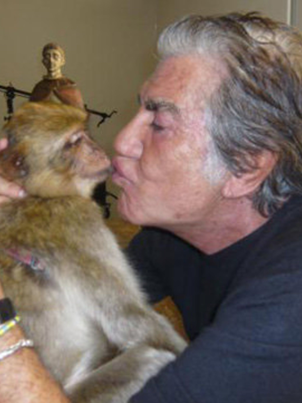 <p>Cavalli illustrates his love of animals</p>