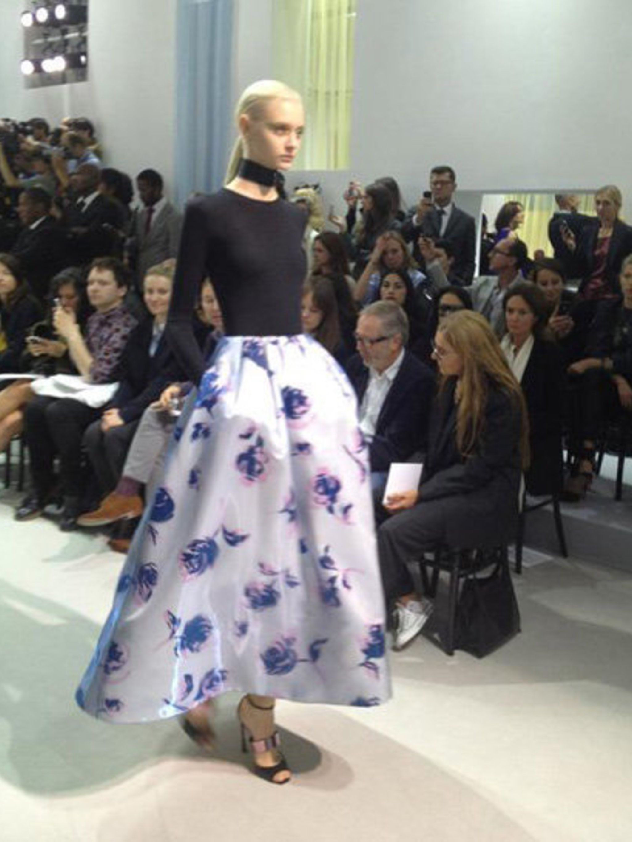 <p>Another look from Christian Dior Spring Summer 2013</p>