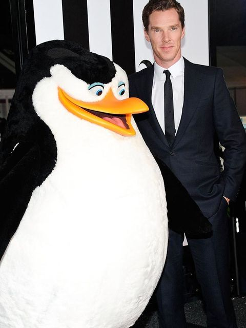 <p>With a penguin at a <em>Penguins of Madagascar</em> screening. Nothing could be better.</p>