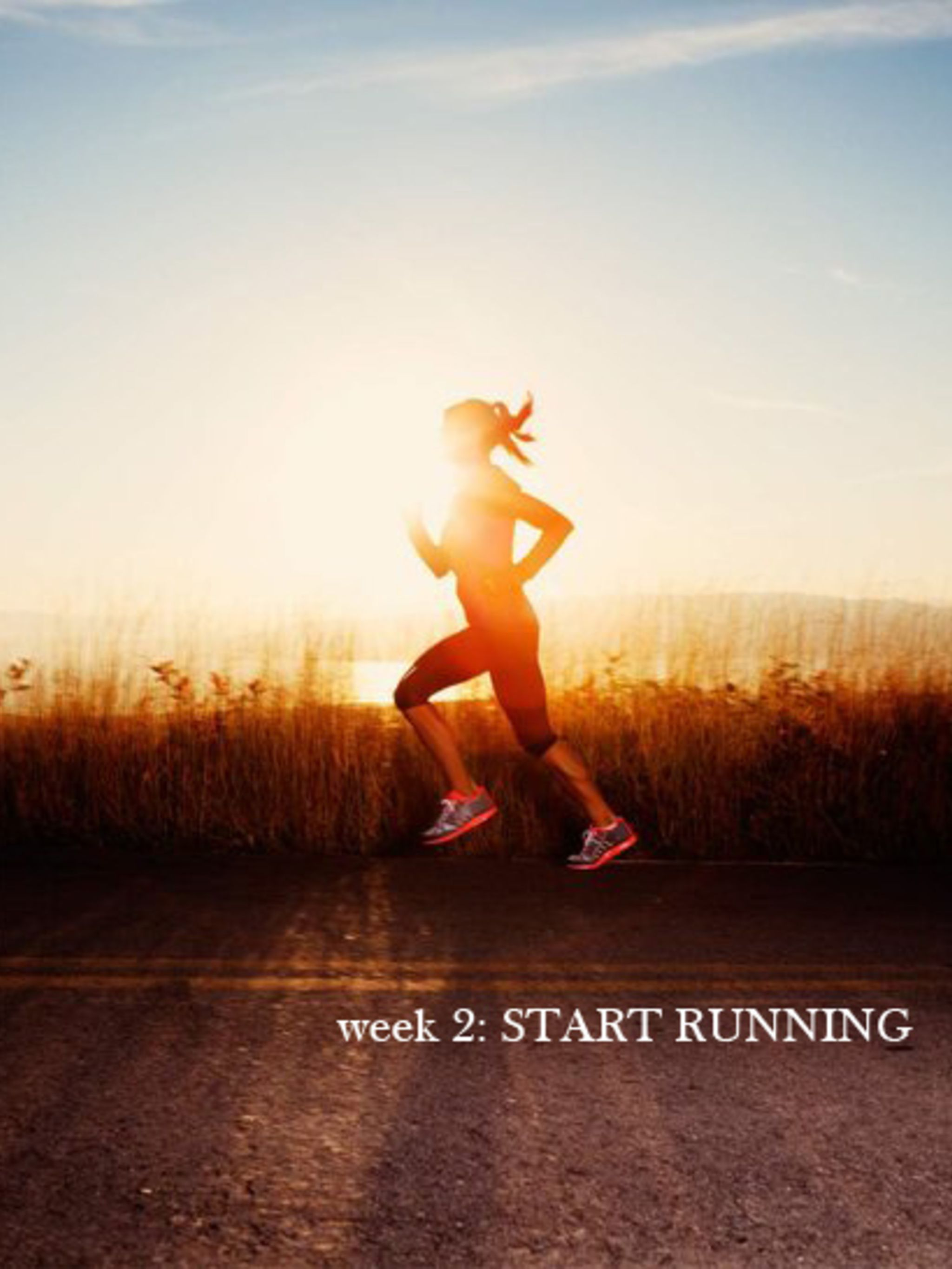 <p>This week you are ready to start running. See how the running panel are getting on...</p>