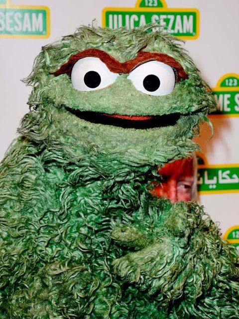 <p>…aka Oscar the Grouch</p>