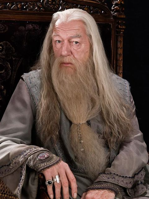 Albus Dumbledore played by Michael Gambon