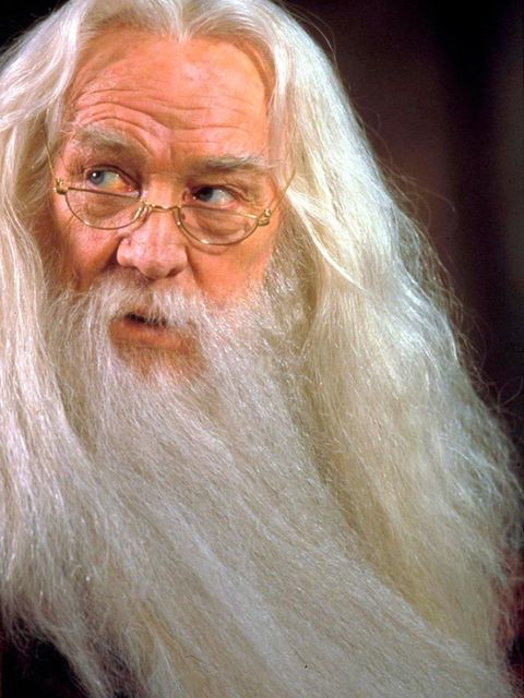 Albus Dumbledore played by Richard Harris