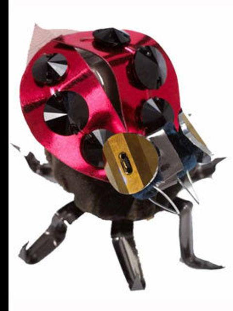 <p>Lady Bug, £105, by Miu Miu, for stockiest details call 020 7409 0900 </p>