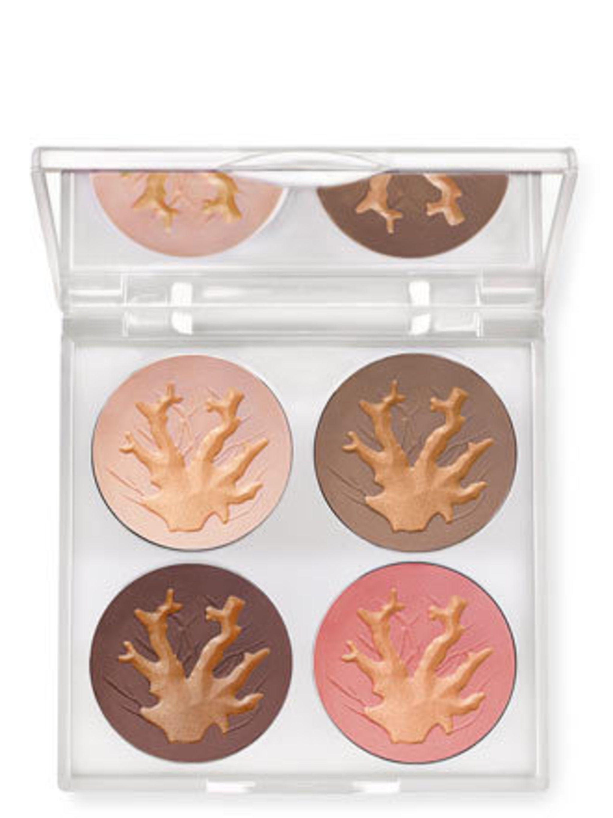 <p>Chantecaille has teamed-up with the Marine Conservation Institute (MCI) to protect 10% of the world's oceans by 2020. Three quarters of the world's coral reefs are at risk as a result of over fishing, pollution and global warming. 5% of every sale of T