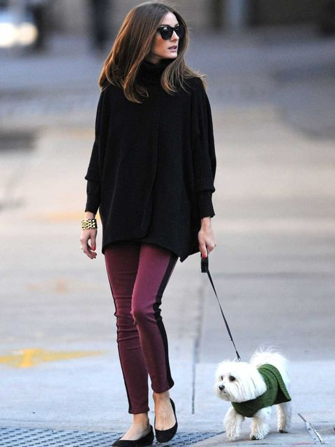 <p>Olivia Palermo out in New York with her dog, Mr Butler</p>