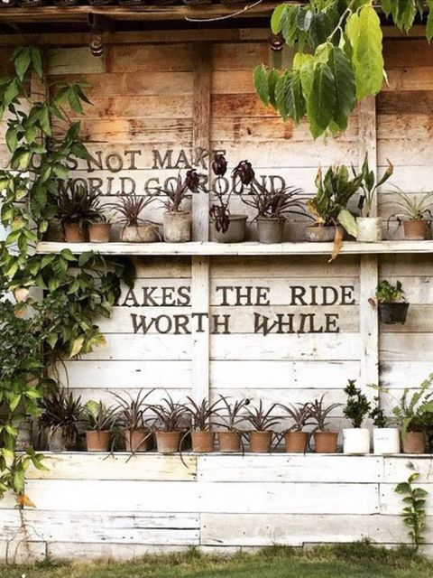 """<p><a href=""""https://instagram.com/p/zaLwCaQSpN/?taken-by=thesill""""><strong>@thesill</strong></a></p>  <p>Who said shelve are for inside only? Fixing shelves to your outside wall can save some precious space while adding character to your plot. Mix plants w"""