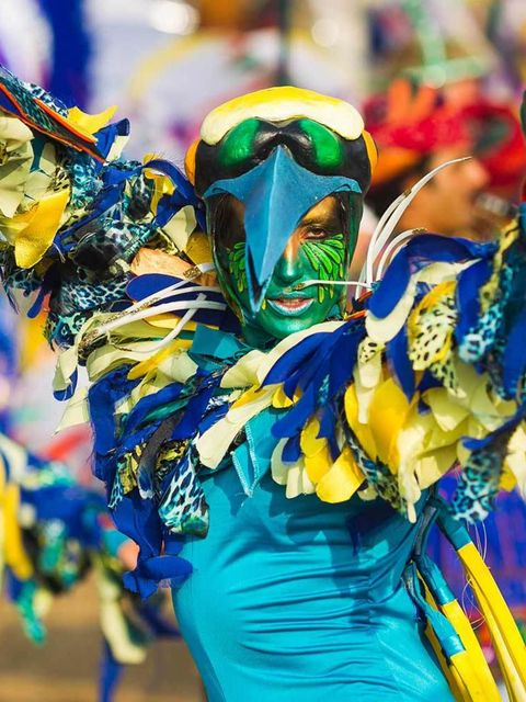 <p>FESTIVAL: Bestival</p>