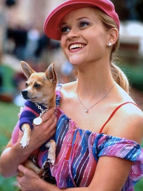 Reese Witherspoon is still perhaps best known for playing perky sorority-sister-turned-lawyer Elle Woods in Legally Blonde.