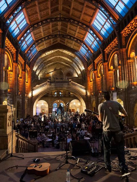 <p><strong>NIGHT OUT: Natural History Museum Lates</strong></p>
