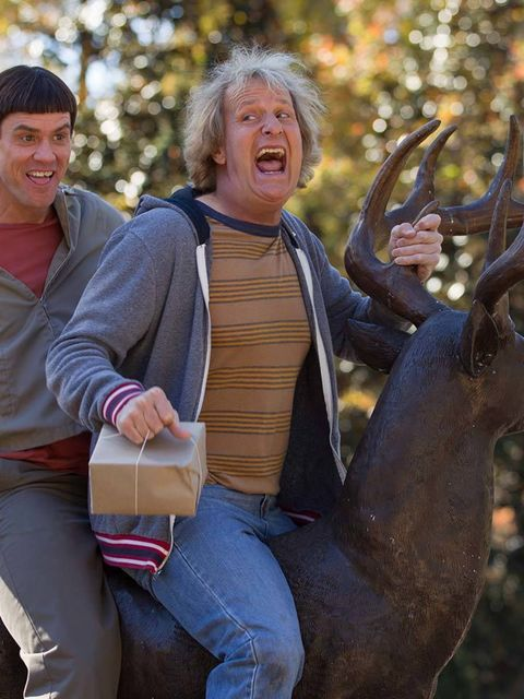<p><strong>FILM: Dumb And Dumber To </strong></p>  <p>Out on Friday, the highly-anticipated sequel to the 1994 cult film, sees Jim Carrey and Jeff Daniels return as Lloyd and Harry. This installment sees the pair set out on a cross-country roadtrip in sea
