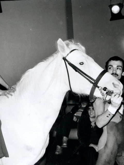 <p>Bianca Jagger celebrates her birthday on a white horse in Studio 54 NYC, 1977.</p>