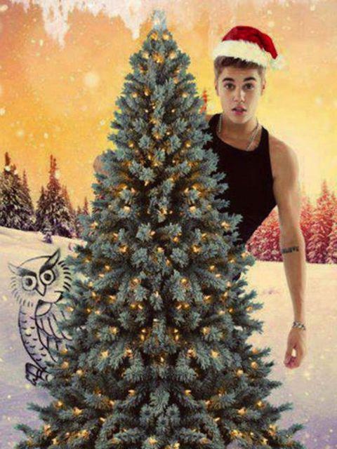 <p>Justin Bieber behind a Christmas tree</p>
