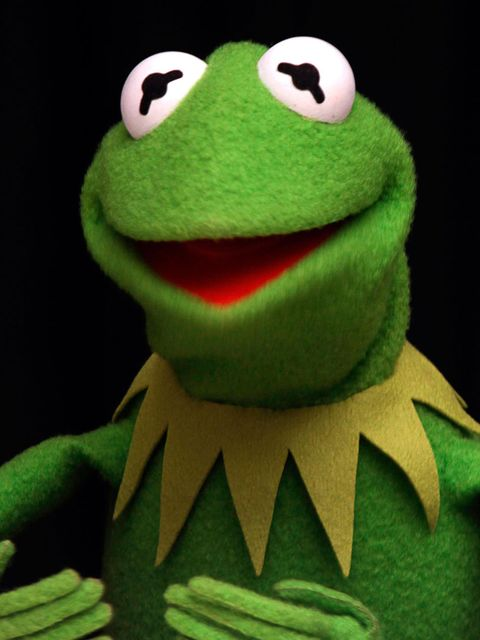 Kermit-the-frog-MAIN