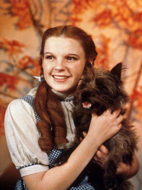 <p>Judy Garland</p>