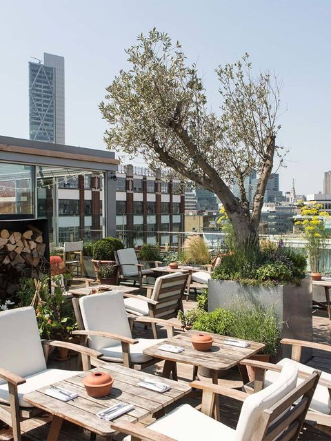 EAT: Brunch at Albion Neo Bankside  On the weekend a boring breakfast just won't cut it. Head down to the Albion, the Terence Conran owned and designed restaurant just behind Tate Modern.  Overlooking a beautiful garden, the restaurant offers a menu of fi