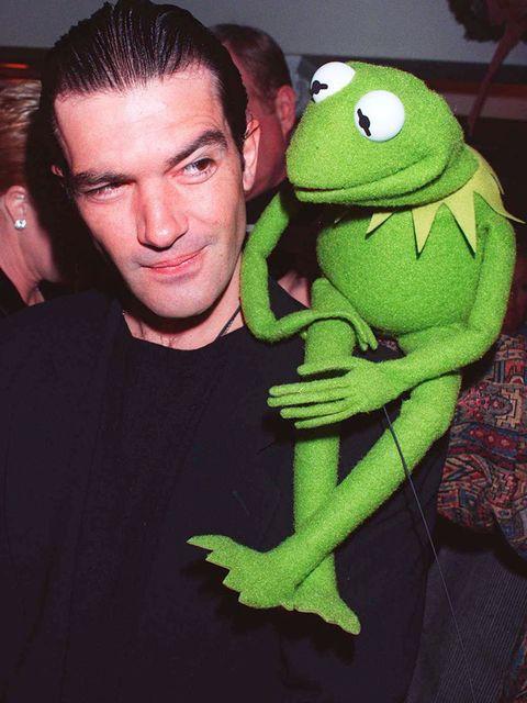 <p>Kermit can even upstage Antonio Banderas</p>