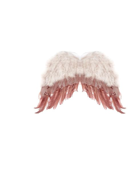 <p>Topshop Festival feathered wings in pink, £35</p>