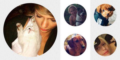 Celebrity Pets June 2016 | ELLE UK