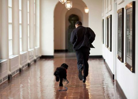 Images of President Barack Obama by photographer Pete Souza