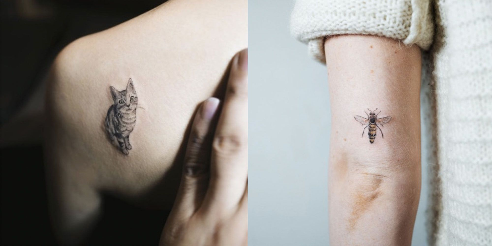 16 tiny animal tattoos delicate animal tattoos for inspiration jeuxipadfo Choice Image