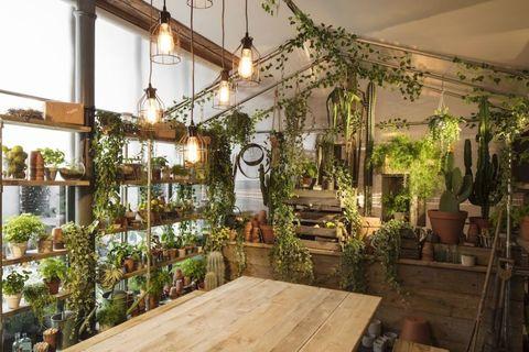 Air bnb and pantone greenery pop-up, Clerkenwell , London