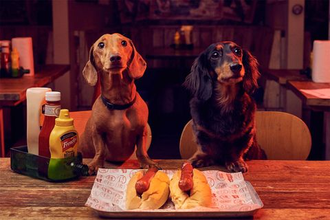MEATliquor restaurant dog friendly pop-up, London