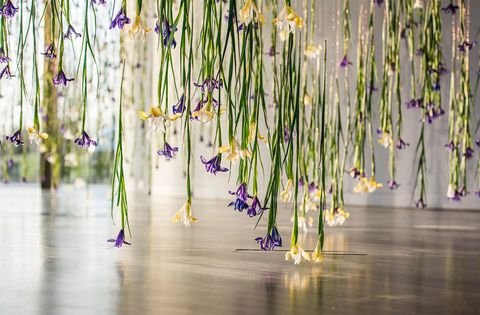 The Iris by Rebecca Louise Law at NOW Gallery, Peninsula Square, Greenwich