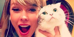Olivia Benson and Taylor Swift | ELLE UK