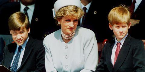 Prince William, Princess Diana and Prince Harry