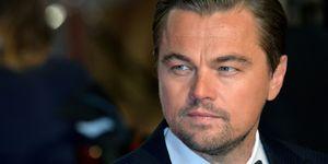 Leonardo DiCaprio to play Leonardo Da Vinci