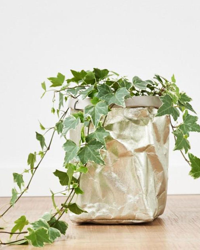 christmas gifts for the home - gold paper bag for plant pot