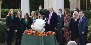 Turkey Pardoning