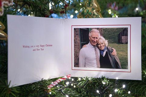 Photograph, Picture frame, Tree, Photography, Adaptation, Interior design, Room, Plant, Anniversary, Photograph album,
