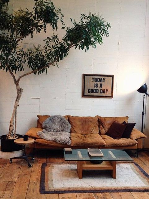 Wood, Branch, Brown, Room, Interior design, Hardwood, Twig, Floor, Wall, Living room,