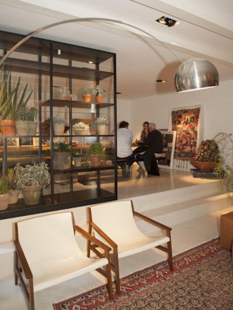 Lighting, Interior design, Flowerpot, Interior design, Ceiling, Light fixture, Houseplant, Picture frame, Hall, Carpet,