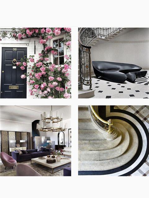 Interior design, Petal, Purple, Interior design, Design, Home, Still life photography, Living room, Floral design, Collage,