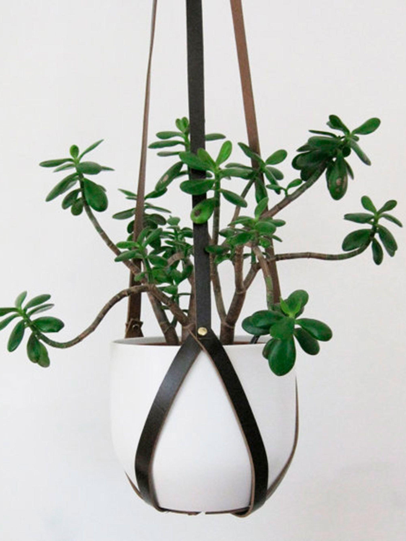 hang plantenbak buiten elegant omdat alle kleien en stenen poreus