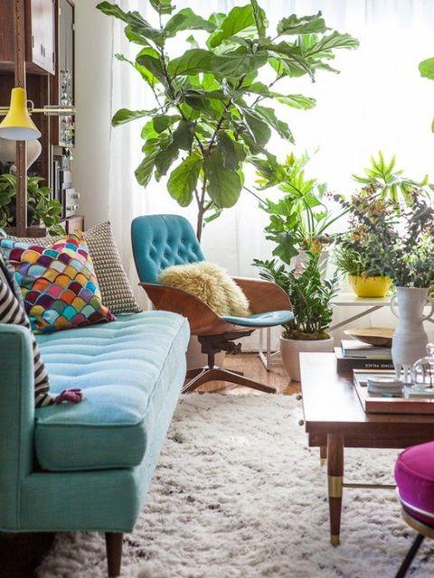Room, Interior design, Furniture, Home, Flowerpot, Interior design, Living room, Houseplant, Teal, Couch,