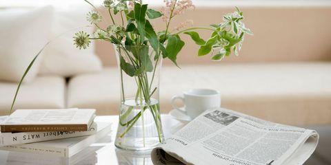 Leaf, Publication, Vase, Artifact, Interior design, Paper, Serveware, Paper product, Centrepiece, Plant stem,