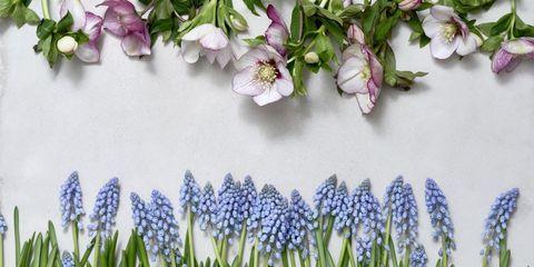 "<p><a href=""http://www.elle.nl/interieur/a564941/diy-schilderij-gedroogde-bloemen/"" target=""_blank"">Je vindt de DIY hier</a> &gt;</p>"