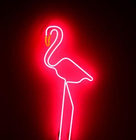 Neon verlichting voor in huis