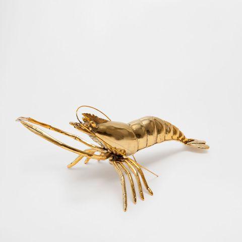 Invertebrate, Amber, Tan, Metal, Beige, Insect, Natural material, Arthropod, Brass, Pest,