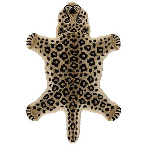 Invertebrate, Organism, Marine invertebrates, Starfish, Echinoderm, Star, Beige, Astronomical object, Symmetry, Stony coral,