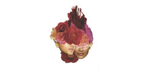 Flower, Pink, Cut flowers, Plant, Petal, Headpiece, Peony,