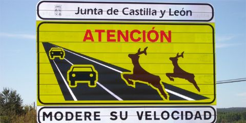 Deer, Sign, Text, Line, Signage, Slope, Parallel, Traffic sign, Rectangle, Advertising,