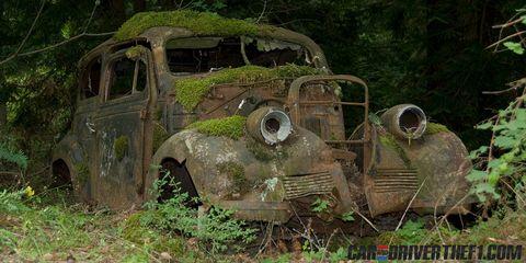 Motor vehicle, Rust, Automotive exterior, Scrap, Auto part, Classic, Automotive window part, Classic car, Jungle, Hood,