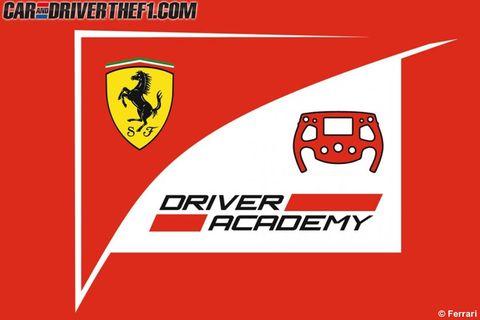 Red, Text, Line, Automotive lighting, Font, Symbol, Sign, Automotive mirror, Graphics, Bovine,