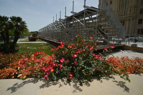 Flower, Plant, Botany, Architecture, Botanical garden, Garden, Spring, Tree, Tourism, Landscape,